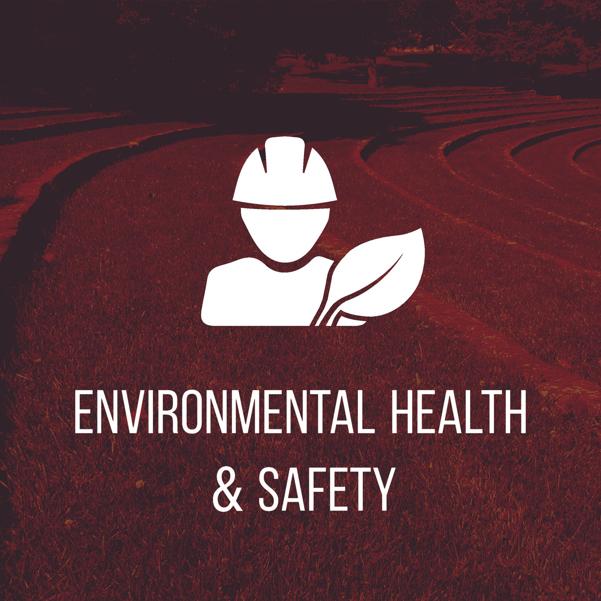 icon of generic man in hardhat with a leaf